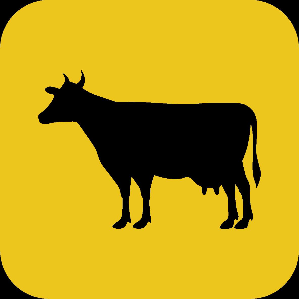 ไอคอน รั้วล้อมวัวของรั้วตาข่ายถักปม รุ่นสูง 165 ซม.