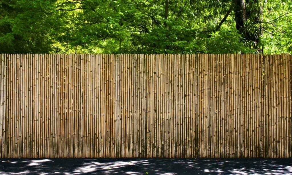 รั้วบ้าน ไม้ไผ่