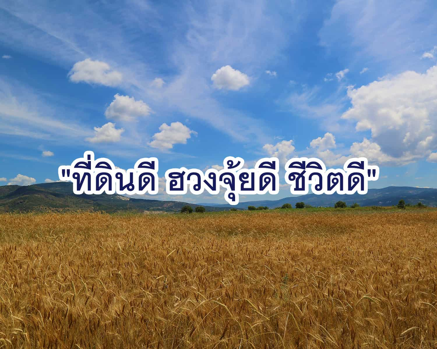 Read more about the article ที่ดินดี ฮวงจุ้ยดี ชีวิตดี