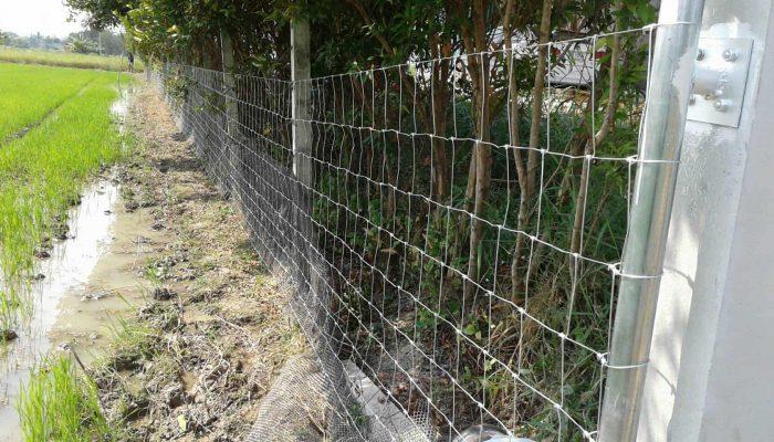 ตัวอย่างที่ 2 การใช้งานรั้วล้อมสวน