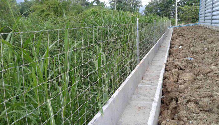 ตัวอย่างที่ 4 การใช้งานรั้วล้อมสวน